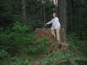 MAry Anne Getting Firewood at the Olympic NAtional Park