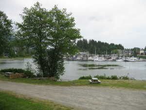 Ucluelet Harbor from the Campsite