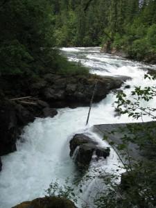Stamp River Falls