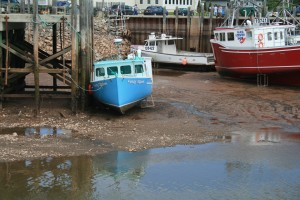 low tide - Fundy